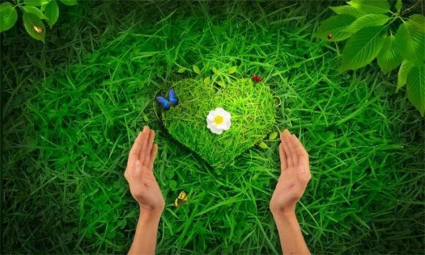 ljubov k prirode