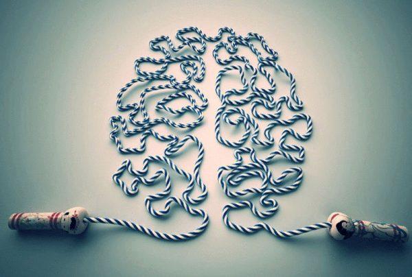 content exercises for the brain econet ru
