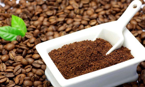 Kofejnaja gushha kak udobrenie dlja komnatnyh rastenij681 7