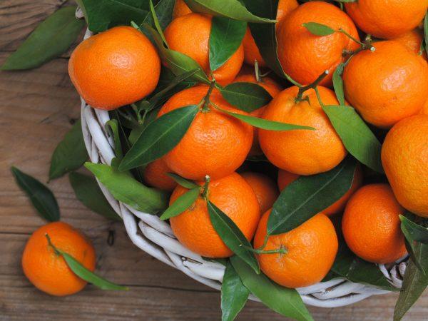 17 prichin sest mandarin