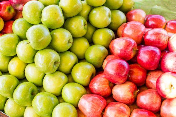 7f70e7cc0df4f60aec3ee3a2f82e6dca quality 75Xresize crop 1Xallow enlarge 0Xw 740Xh 493