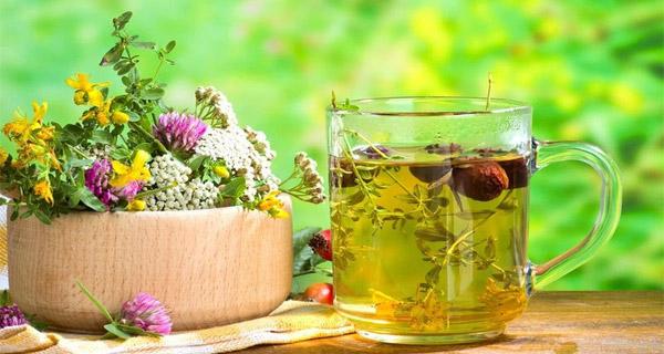 Какие травы можно употреблять при диабете?