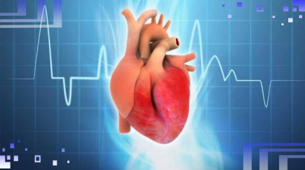 Стабильная стенокардия напряжения: способы диагностики и варианты лечения
