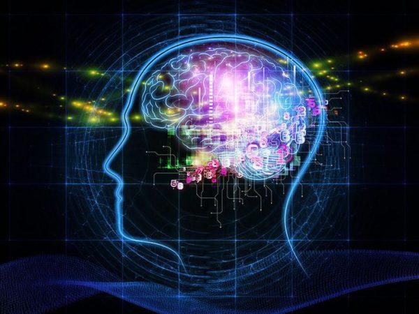zdorove mozga