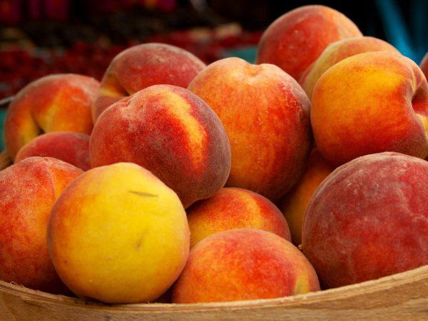persik odin iz naibolee poleznykh letnikh fruktov