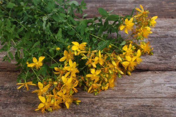 depositphotos 28542649 stock photo big bunch of fresh yellow