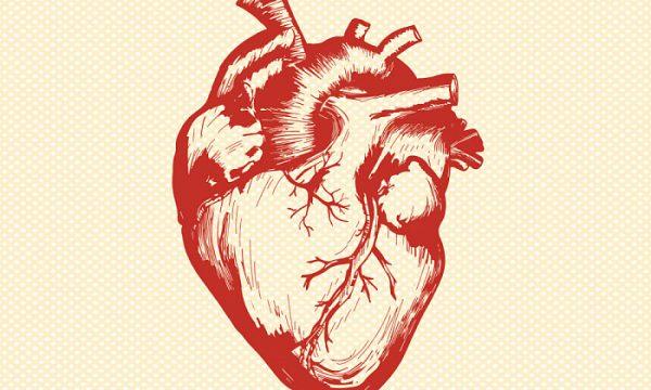 9 легких советов, как сохранить здоровое сердце