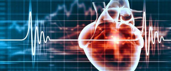 Aerzte medizinische Zentren Kardiologie 69CcwDS.jpg.730x0 q85 crop upscale
